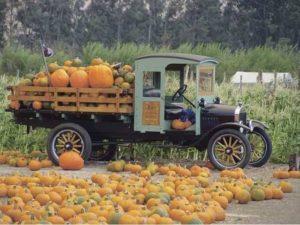 The Harvest Festival Auto Show